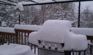 SnowStorm03-23-2013