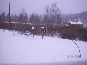 March 23 2013 Snow - Ken 3