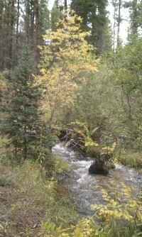 Autumn 9-22-2013e
