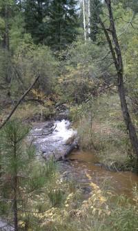 Autumn 9-22-2013f