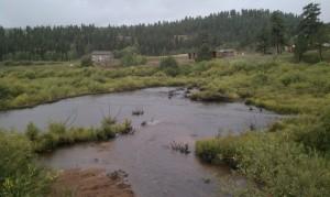 Rain 9-15-2013f