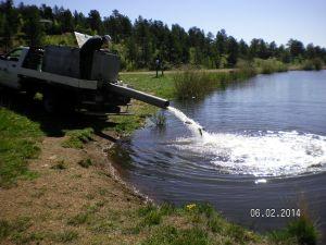 Restocking Fish Pond 06-02-2014d