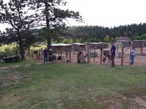 Horse Corral 9-14-2014c