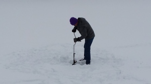 Ice Thickness 03012015b
