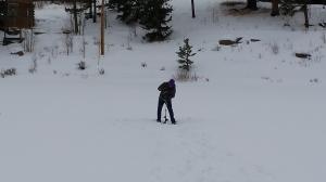 Ice Thickness 03012015c