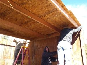 shelter roof 10-11-2015e