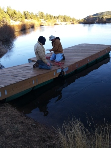 Dock Removal 11072015a