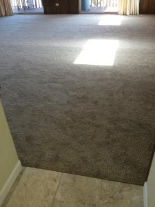 New Carpet 11142015a