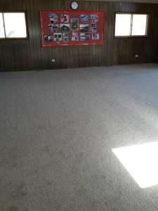 New Carpet 11142015c